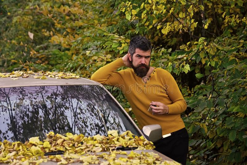 Strong man. man in autumn forest. Man with beard at car.travelling and fall holiday. Autumn guy outdoor. adventure and wanderlust royalty free stock photography