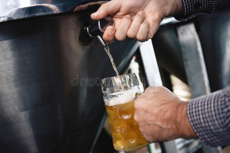 Strong man`s hands pour beer in tumbler from beer tap at craft brewery. Brewer pours beer into glass for trial of consignment royalty free stock image