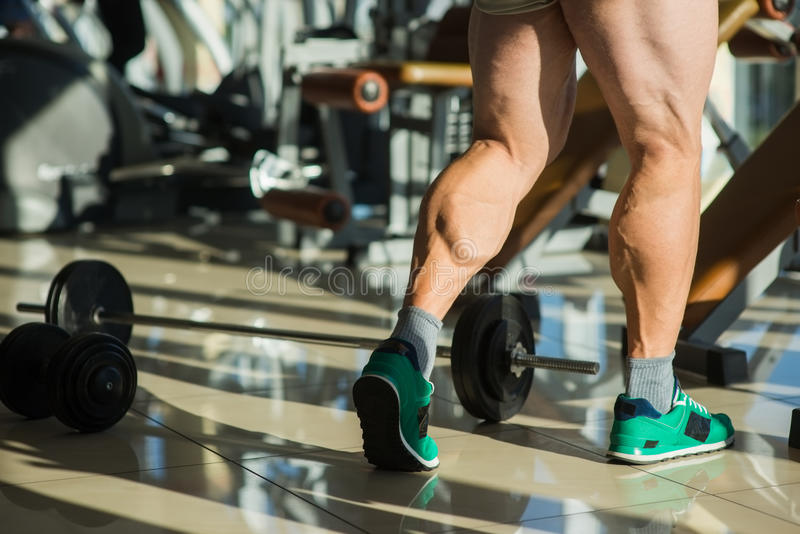 Strong man's legs. royalty free stock photography