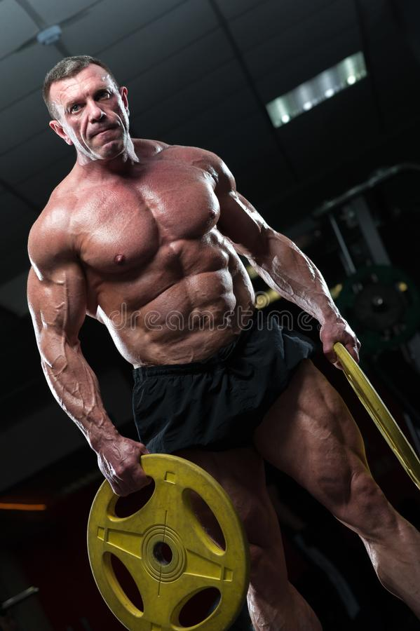 Strong mature man with relief body posing in gym. High level bodybuilder posing with heavy weights in hands. Strong mature man with relief body royalty free stock images