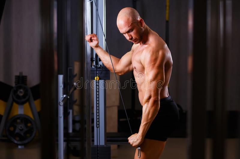 Strong ripped bald man bodybuilder working out with equipment in. Gym. Sport, fitness, pumping iron, bodybuilding concept stock image