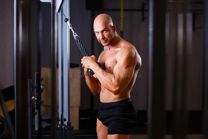 Strong ripped bald man pumping iron. Bodybuilder posing with equ. Ipment in gym. Sport, fitness, bodybuilding concept stock photography