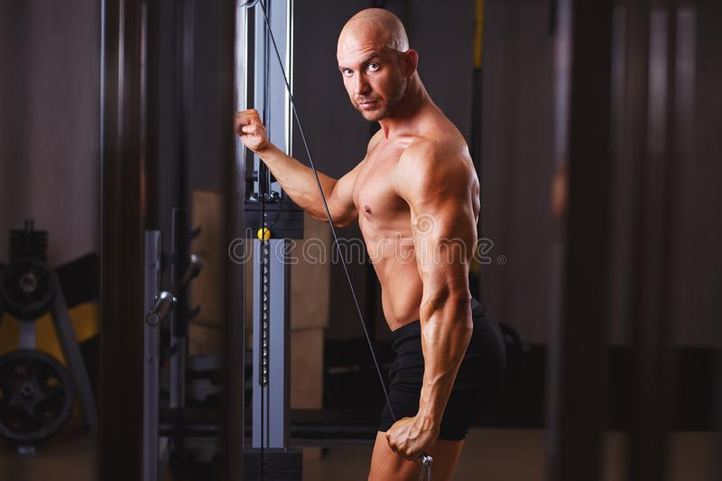 Strong ripped bald man pumping iron. Bodybuilder posing with equ. Ipment in gym, toned image. Sport, fitness, bodybuilding concept royalty free stock photos
