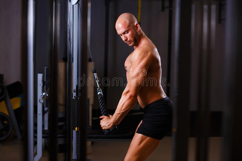 Strong ripped bald man pumping iron. Bodybuilder working out wit. H equipment in gym. Sport, fitness, bodybuilding concept stock images