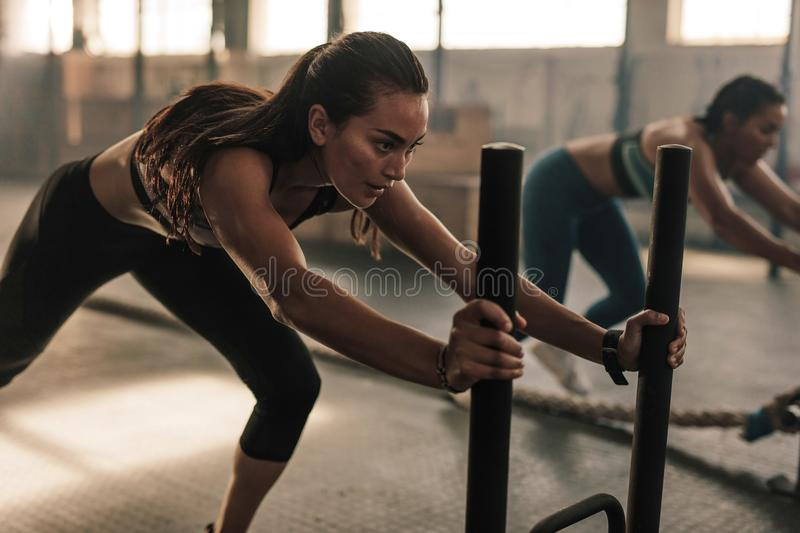 Fit women exercising at gym. Strong young female pushing the prowler exercise equipment. Fit women exercising at gym royalty free stock photo
