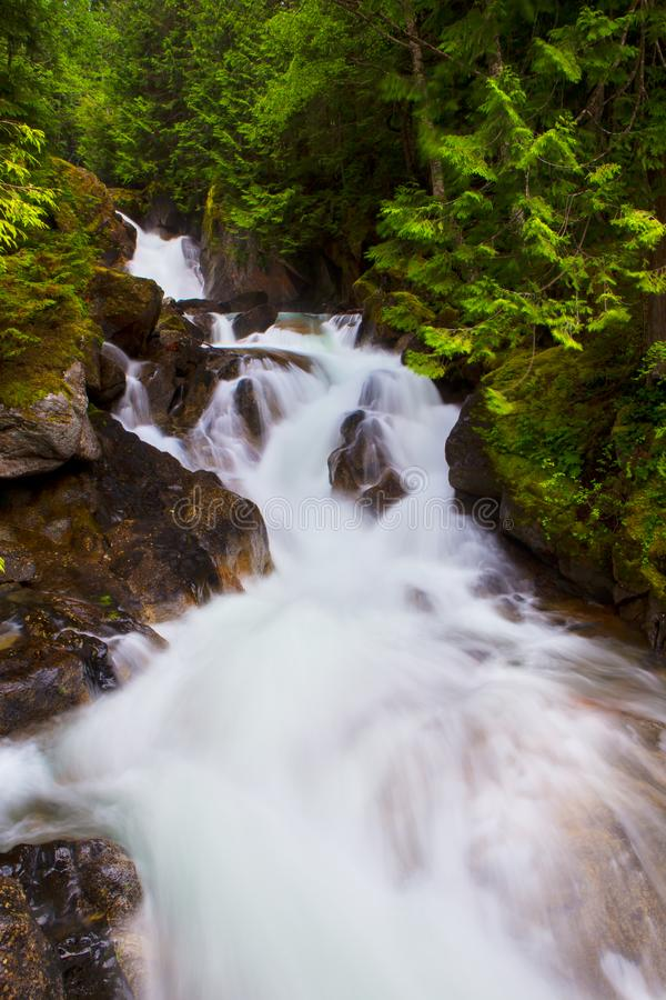 Stroom en waterval in Washington royalty-vrije stock foto's