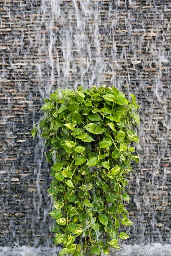 Stroom van water op een bakstenen muur royalty-vrije stock foto's