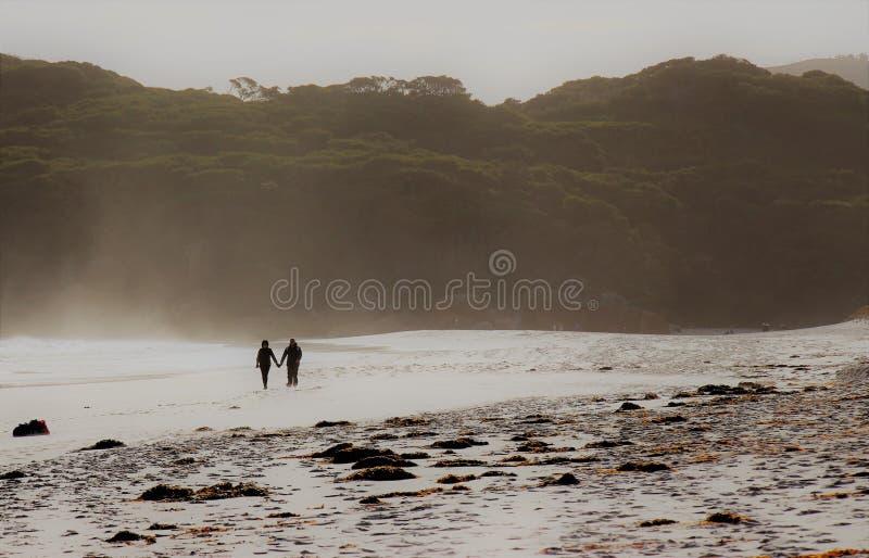 Strosa på stranden tillsammans royaltyfri bild