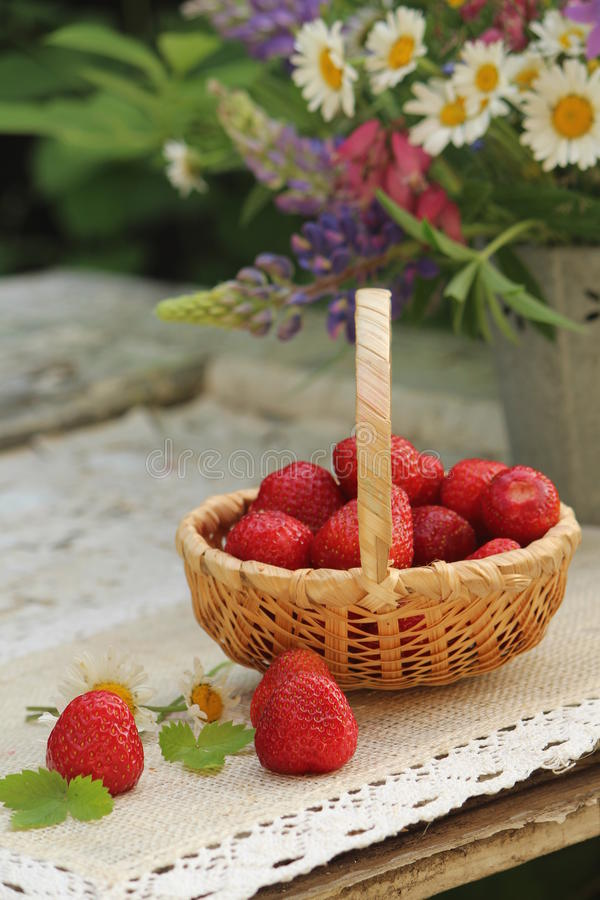 Strowberries fotografia stock