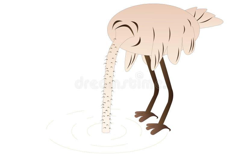 Download Struś ilustracji. Obraz złożonej z ptak, niepokój, zwierzę - 18237706