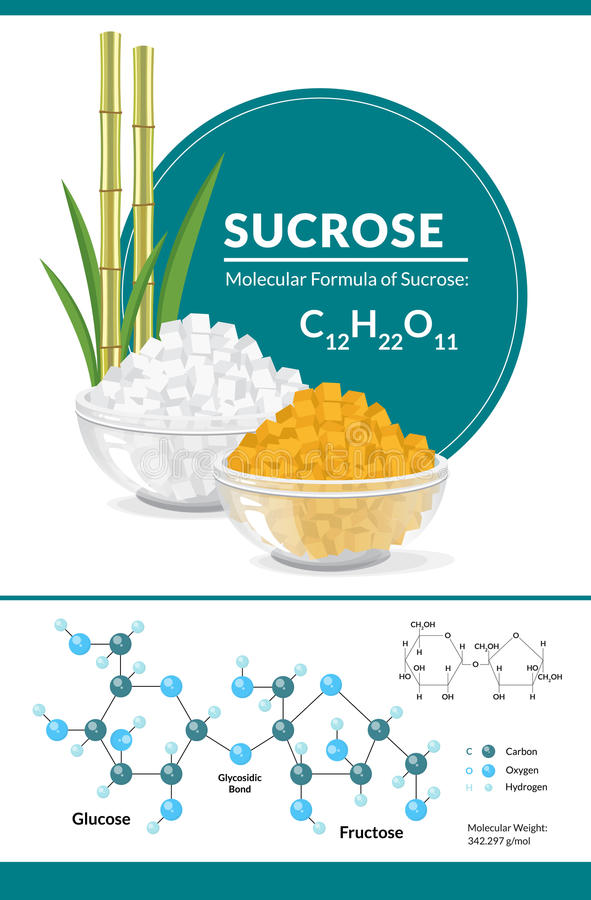 Structural chemical formula and model of sucrose. White and brown sugar cubes in bowls. Vector illustration. Structural chemical formula and model of sucrose stock illustration