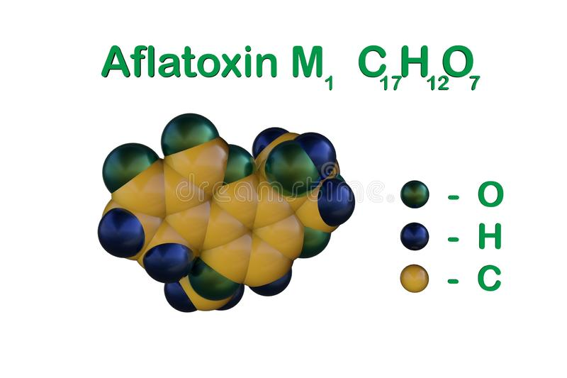 Structural chemical formula and molecular model of aflatoxin M1, carcinogenic toxin present in milk and dairy products vector illustration