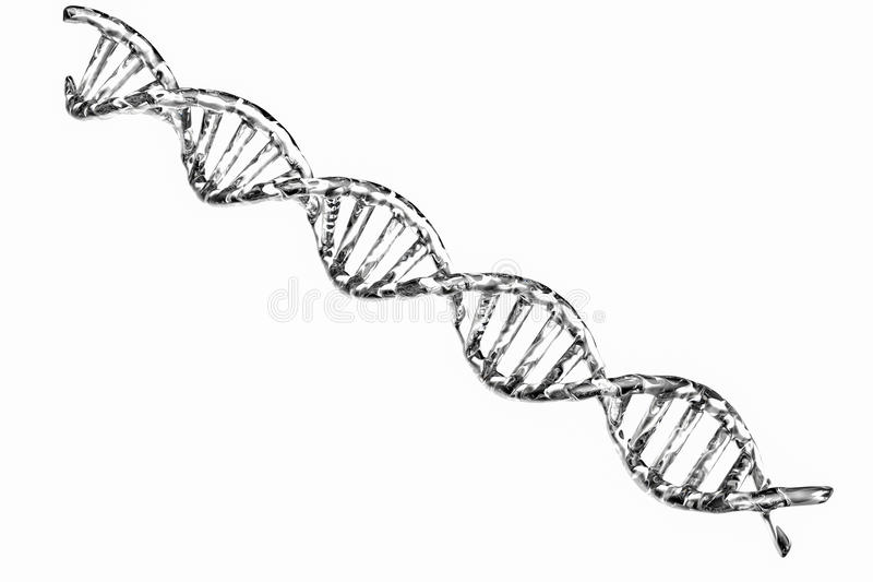 Structure argentée d'ADN sur le fond blanc image stock