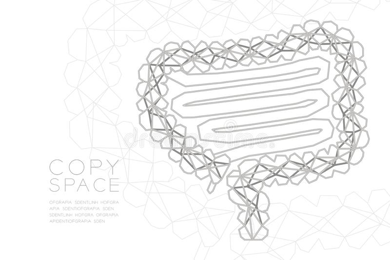 Structure argentée de cadre de polygone de wireframe de forme d'intestin, illustration de conception de l'avant-projet d'organe  illustration de vecteur