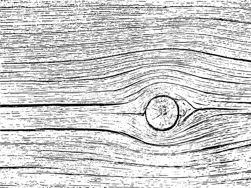 Structure of cracks of wood background. Fragment of an old tree with a knot royalty free illustration