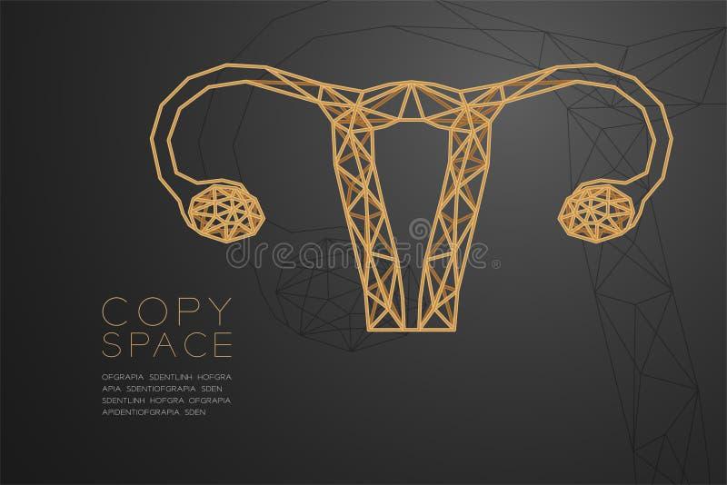 Structure d'or de cadre de polygone de wireframe de forme d'ovaire et d'utérus, illustration de conception de l'avant-projet d'o illustration libre de droits