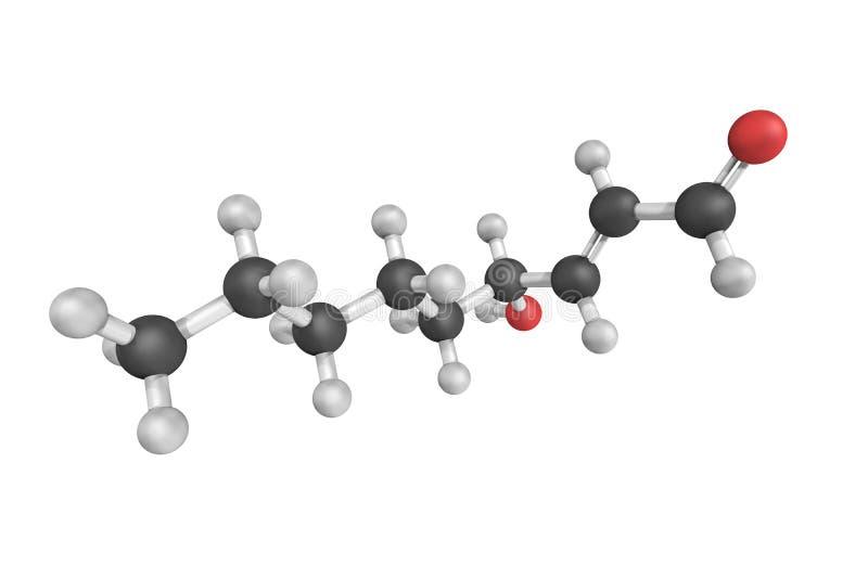 structure 3d de 4-Hydroxynonenal, un hydroxyalkenal insaturé illustration stock