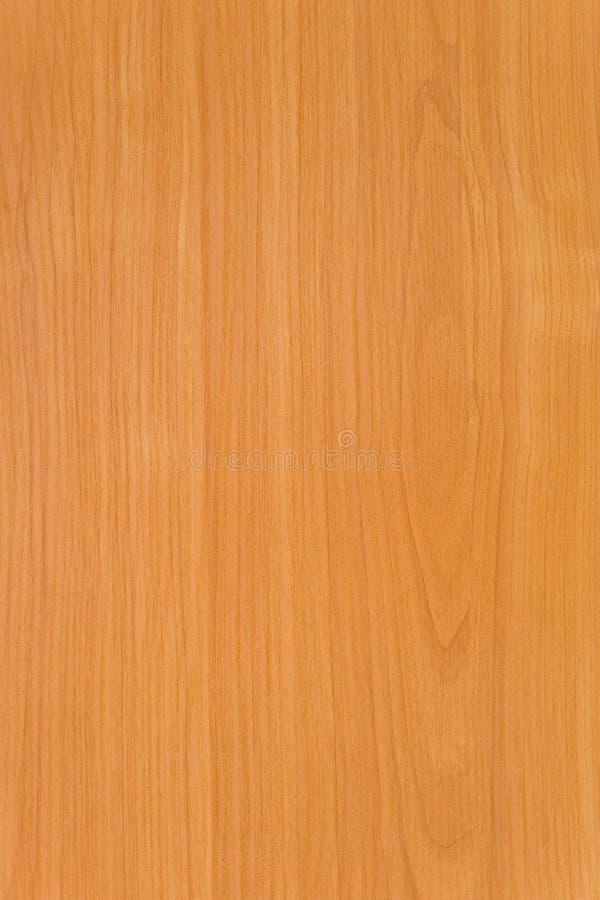 Structure d'un bois image libre de droits