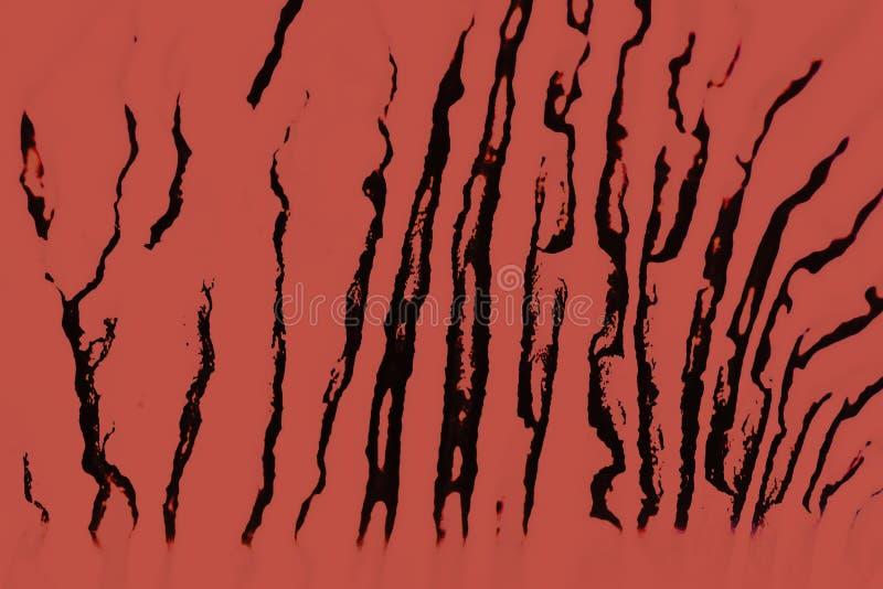 Structure de Digitals de la peinture Fond abstrait dans la couleur rouge image libre de droits