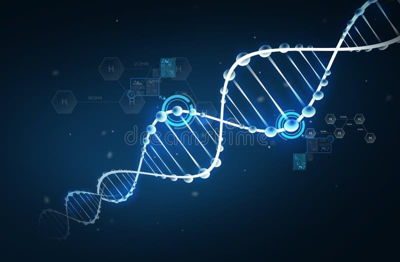 Structure de molécule d'ADN avec la formule d'hydrogène illustration libre de droits