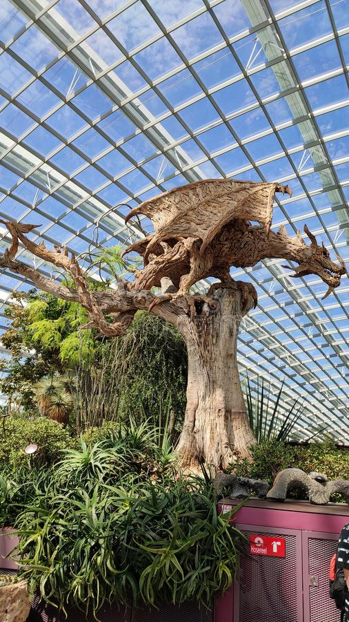 Structure en bois de dragon du feu entourée par les plantes vertes photo stock