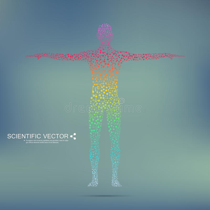 Structure molecule of man. Abstract model human body DNA . Medicine, science and technology. Scientific Vector for your. Design vector illustration