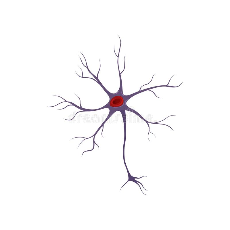 Structure of neuron, nerve cell. Anatomy and science concept. Icon in flat style. Flat vector design for medical vector illustration