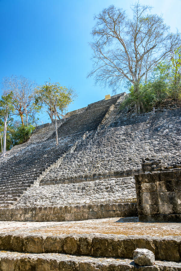 Structure One in Calakmul stock photos