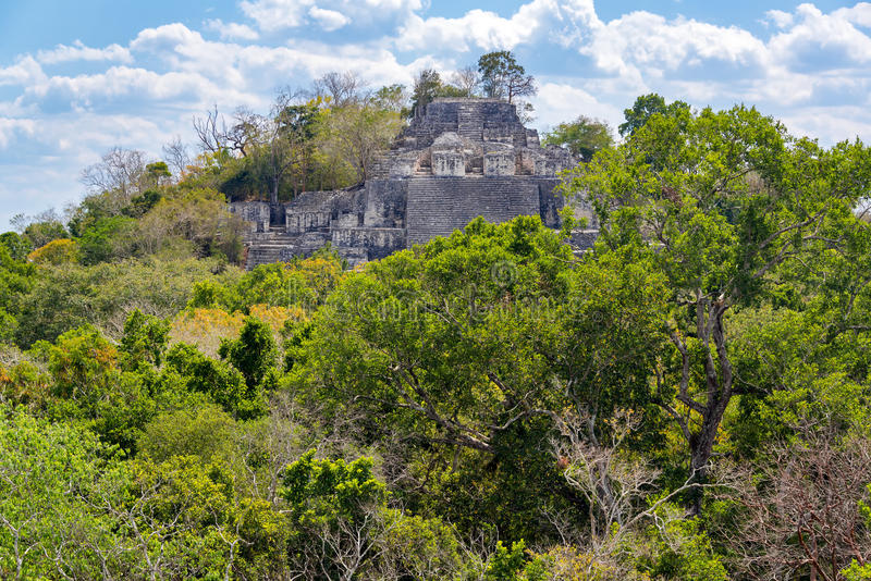 Structure Two in Calakmul, Mexico royalty free stock image