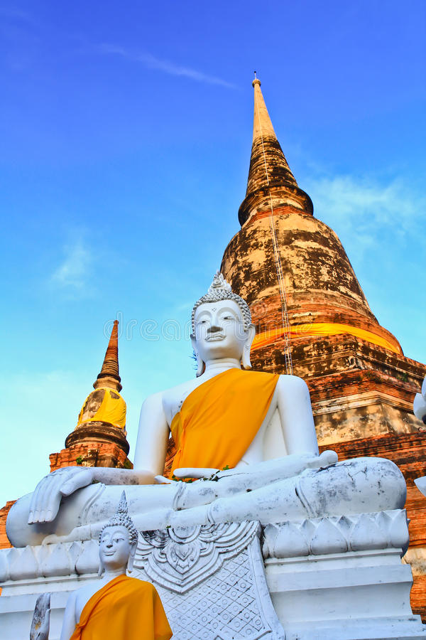 White buddha statue and ancient pagoda. Structure at Wat Yaichaimongkol in Ayutthaya province of Thailand royalty free stock images