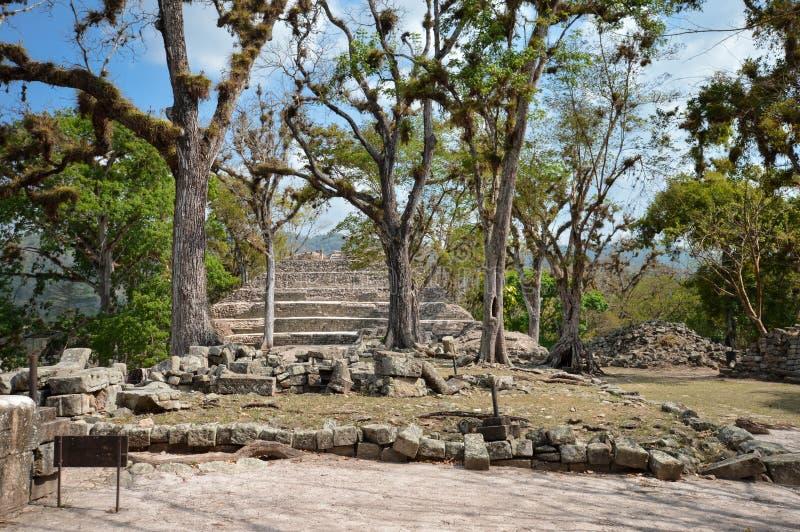 Structuren van het hof van het Oosten bij de archeologische plaats van Copan van Maya beschaving in Honduras royalty-vrije stock afbeelding