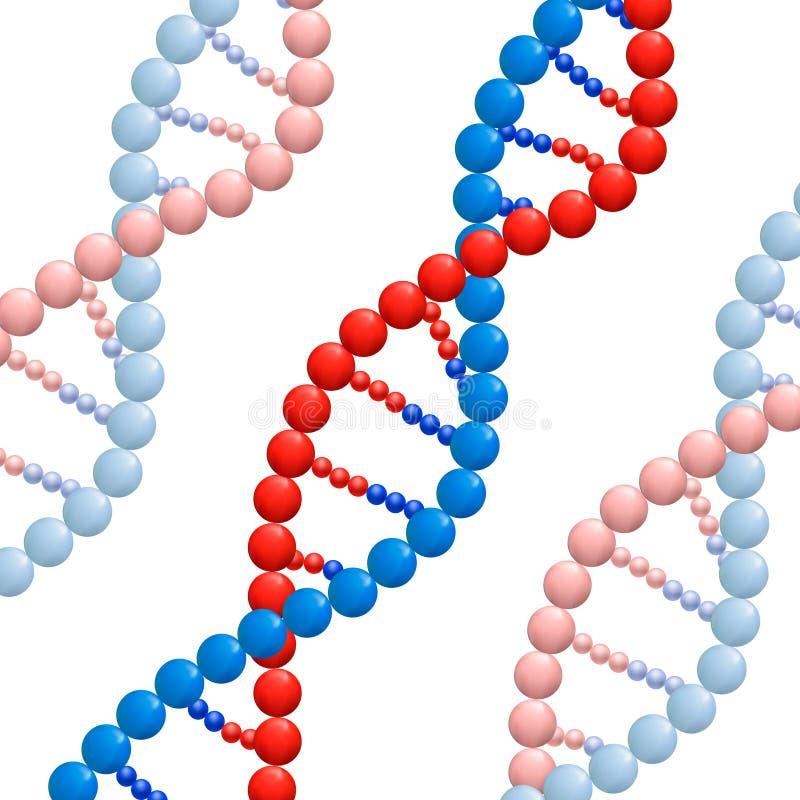Structuur van DNA, VECTORillustratie op witte achtergrond royalty-vrije illustratie