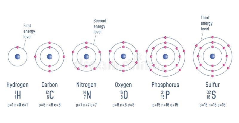 Struktur av en atom vektor illustrationer