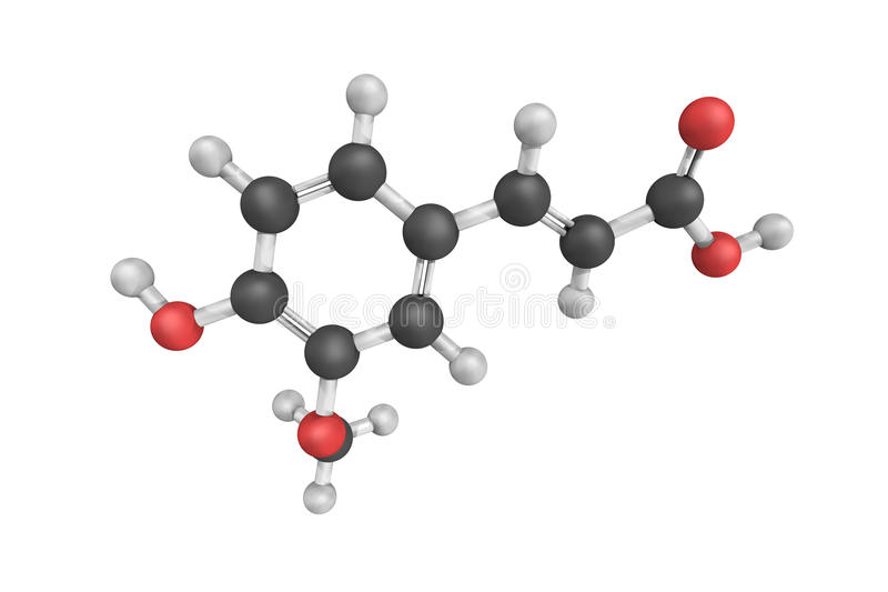 struktur 3d av Ferulic syra, en hydroxycinnamic syra och en typ royaltyfri illustrationer