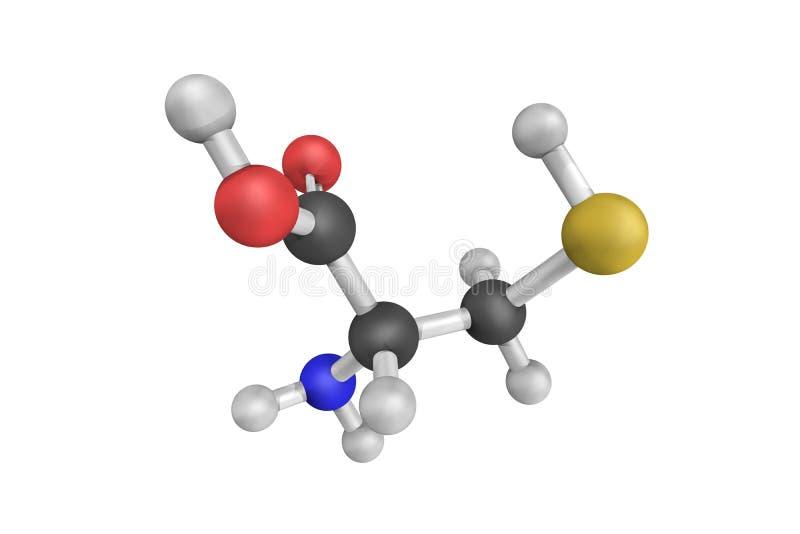 Struktur 3d des Cysteins (abgekürzt als Cys oder C), ein Halbessen stockfotos