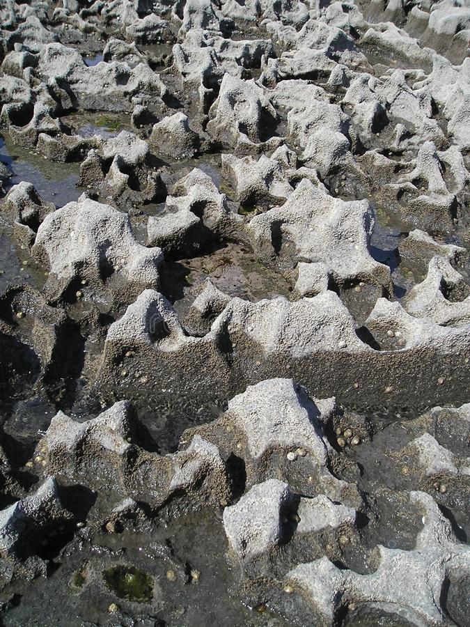 Struktur der Kalksteinküste, Doolin, Irland, EU. stockbild