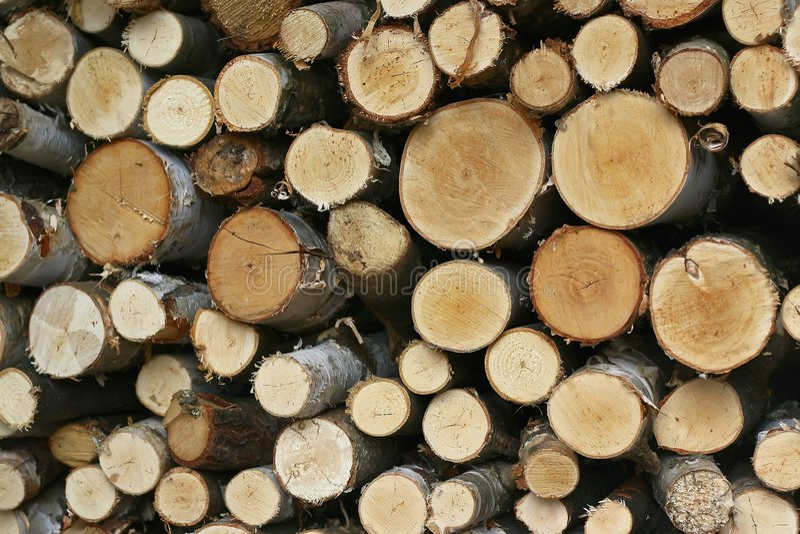 struktura drewniana zdjęcie royalty free