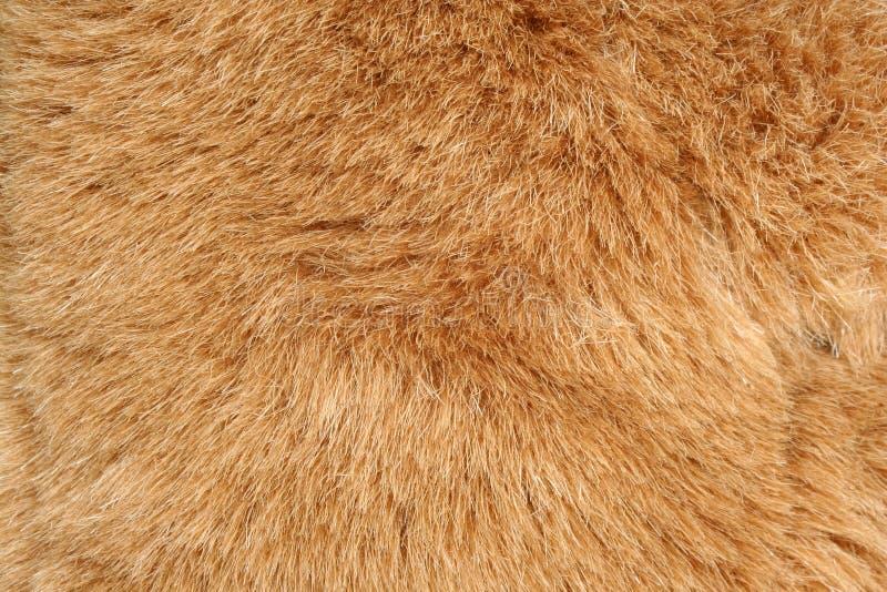 struktura futerkowa tło brown obraz royalty free