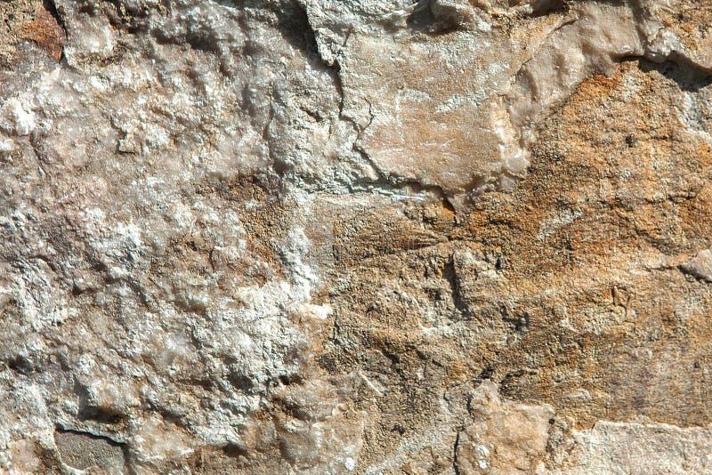 Struktura powierzchnia kamie?, u?ywa? jako t?o moss ska?y kamienia konsystencja naturalne ska?y obrazy royalty free