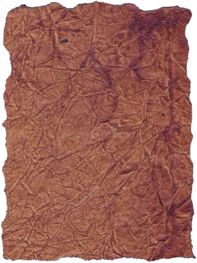 struktura skóry tło obraz royalty free