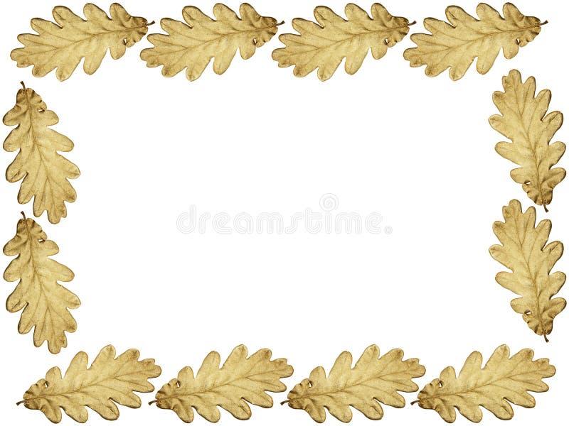 struktura złoty dąb ilustracja wektor