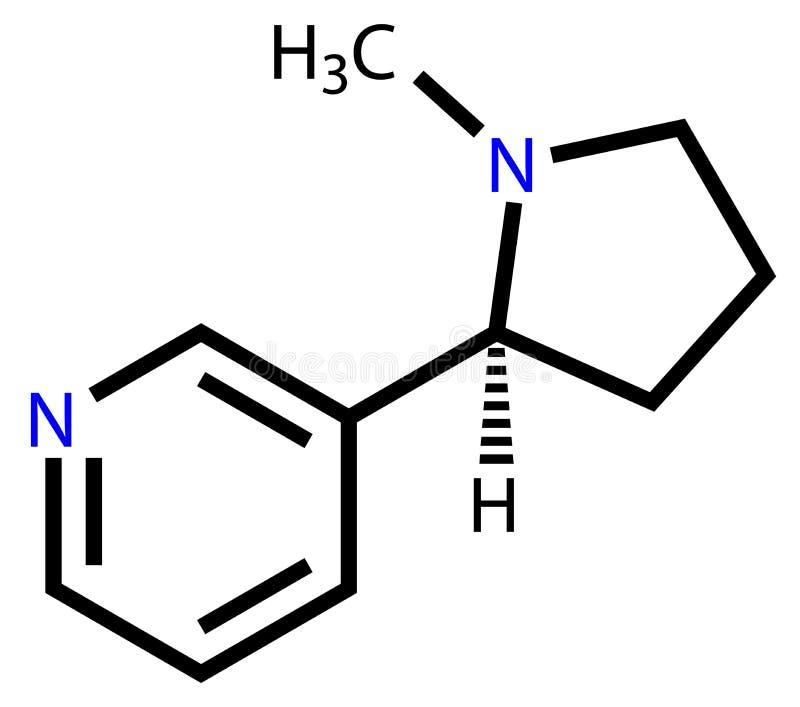 Strukturell formel för nikotin vektor illustrationer