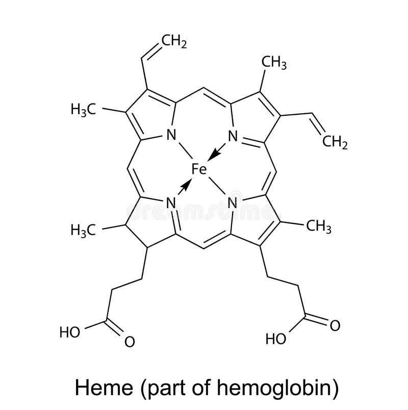 Strukturell kemisk formel av hememolekylen vektor illustrationer