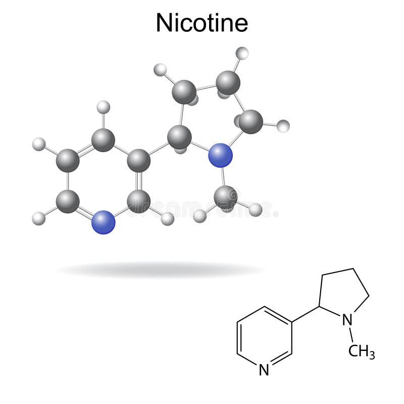 Strukturell kemisk formel och modell av nikotin vektor illustrationer