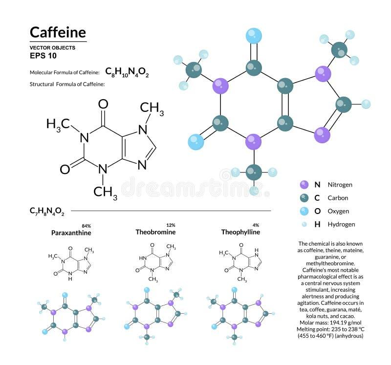 Strukturell kemisk molekylär formel och modell av koffein Atomer föreställs som sfärer med att kodifiera för färg royaltyfri illustrationer