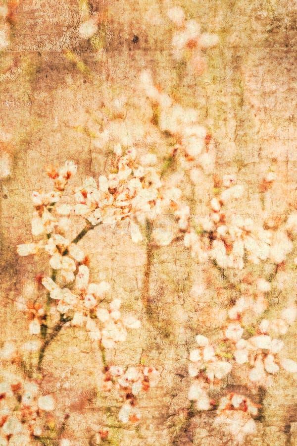 Strukturierter Blumenhintergrund lizenzfreie stockfotografie