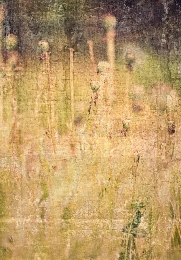 Strukturierter Blumenhintergrund lizenzfreie stockbilder