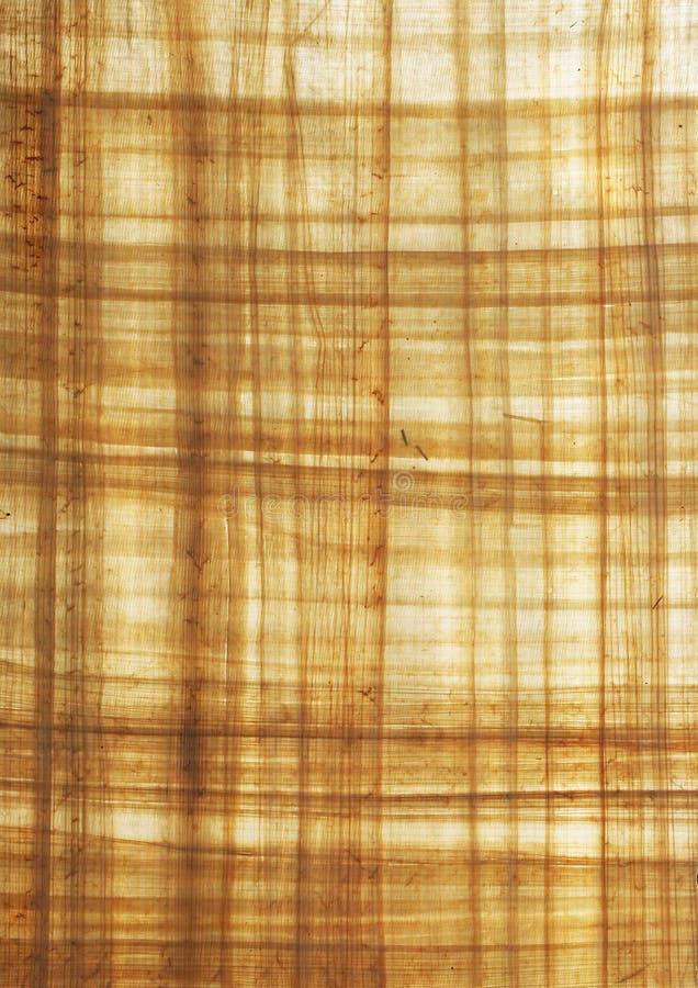 Strukturiertes Papyrusblatt stockbild