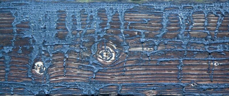 struktury drewno obraz royalty free
