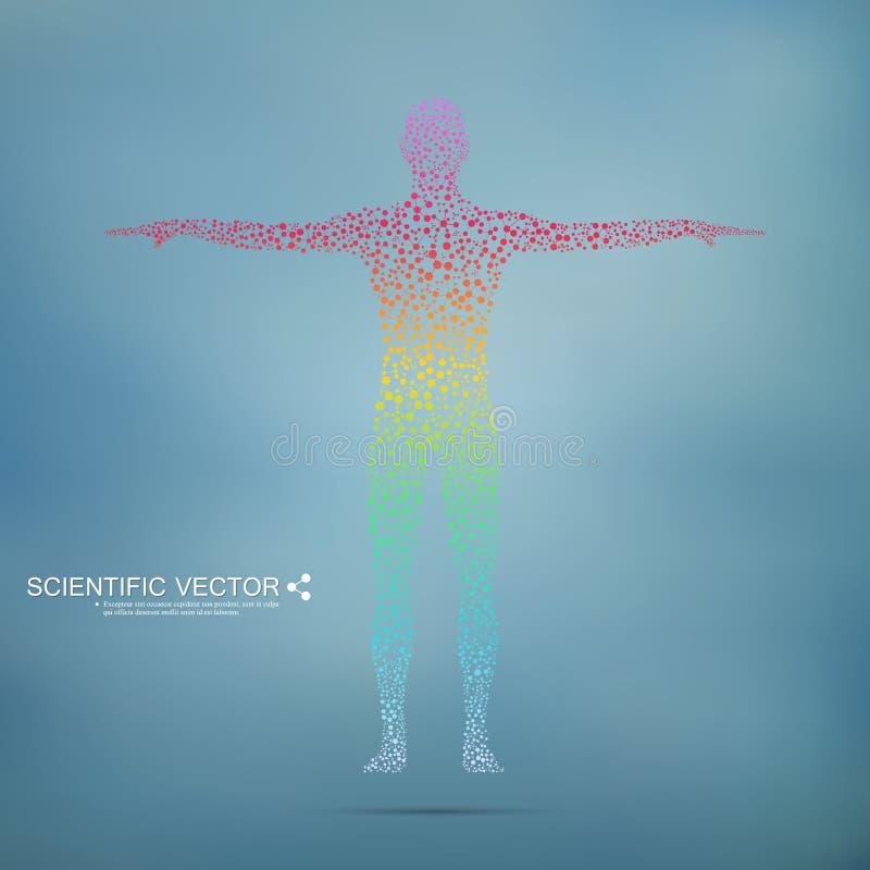 Struktury molekuła mężczyzna Abstrakcjonistycznego modela ciała ludzkiego DNA Medycyna, nauka i technika Naukowy wektor dla twój ilustracji